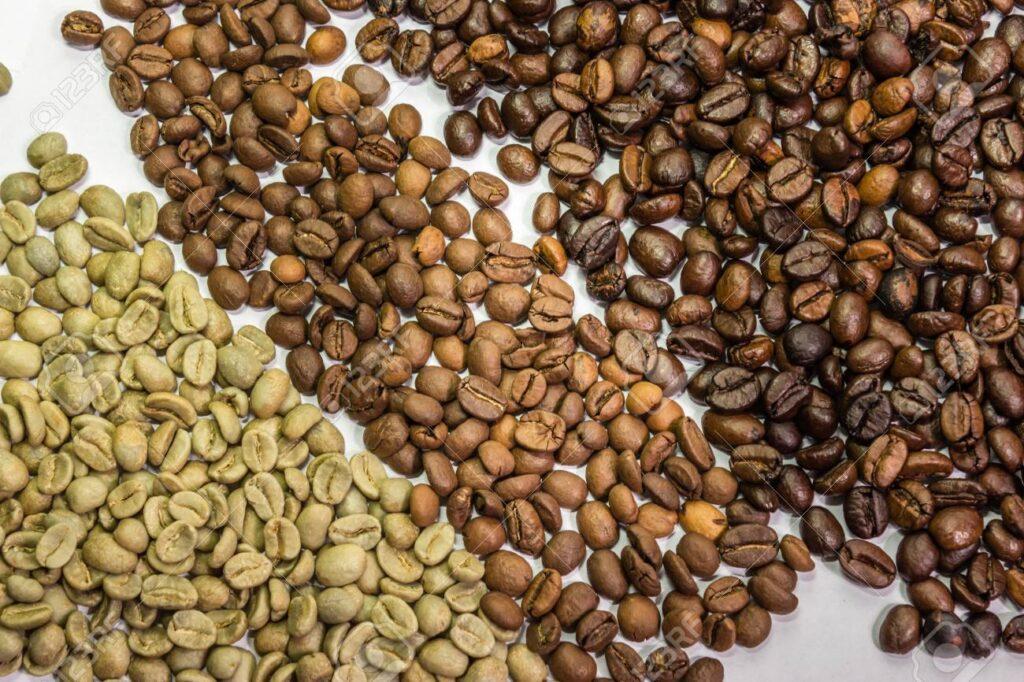 tipos de grano de cafe